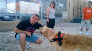 adiestramiento perros terapia alicante