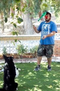 interacciones asistidas con animales
