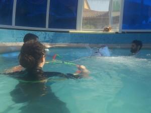terapia con perros en agua