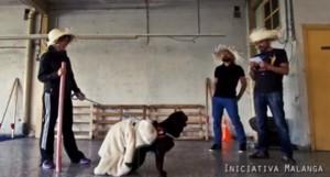 interaccion con perros alicante