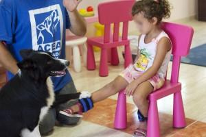 terapia física o fisioterapia asistida con perros