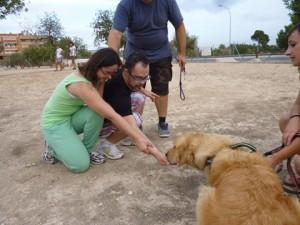 terapia con perros y sindrome de down Alicante