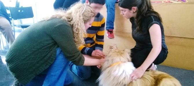 Terapia asistida con perros en Petrer