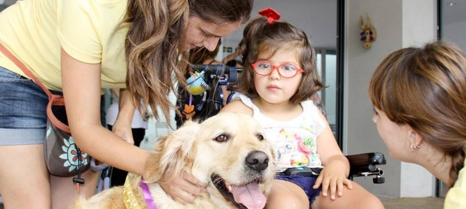 Terapia asistida con animales en San Juan de Alicante
