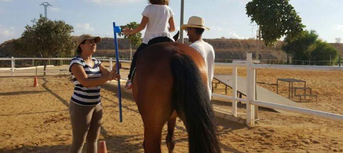 Terapia con caballos en Alicante