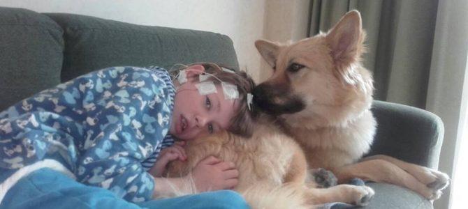 Perros detectores de epilepsia