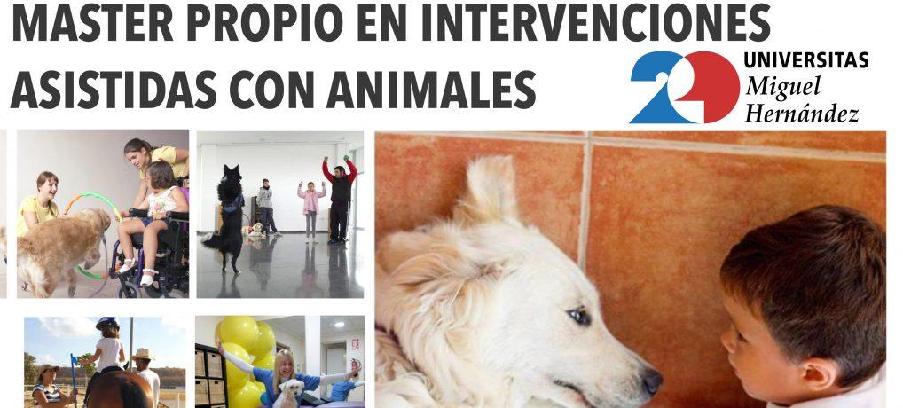 MASTER EN INTERVENCIONES ASISTIDAS CON ANIMALES
