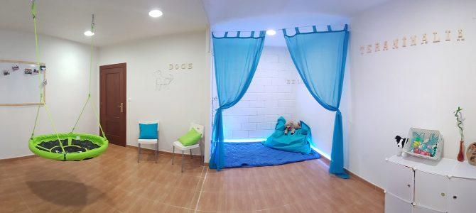 Centro de terapia ocupacional en Alicante